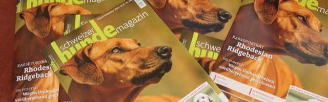 RR-Portrait im Schweizer Hundemagazin