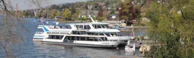 Mittwoch 13.13 Uhr: MS Albis prallt in den Küsnachter Schiffssteg
