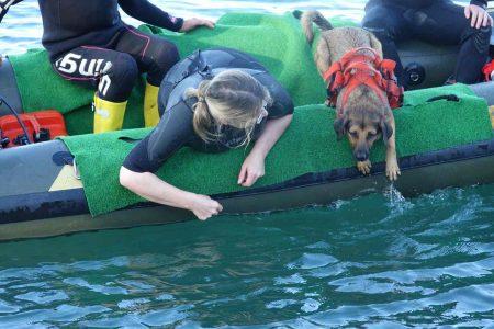 Der schwierige Sprung vom Boot ins Wasser.