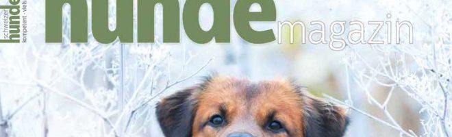 Schweizer Hundemagazin Nr. 1